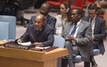 SRSG Mohamed Ibn Chambas briefing to Security Council on UNOWA activities