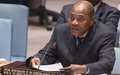 Briefing to the Security Council on the 15th Report of the SG on the activities of the UNOWA