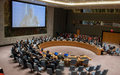 SRSG Mohamed Ibn Chambas briefed the Security Council on Boko Haram